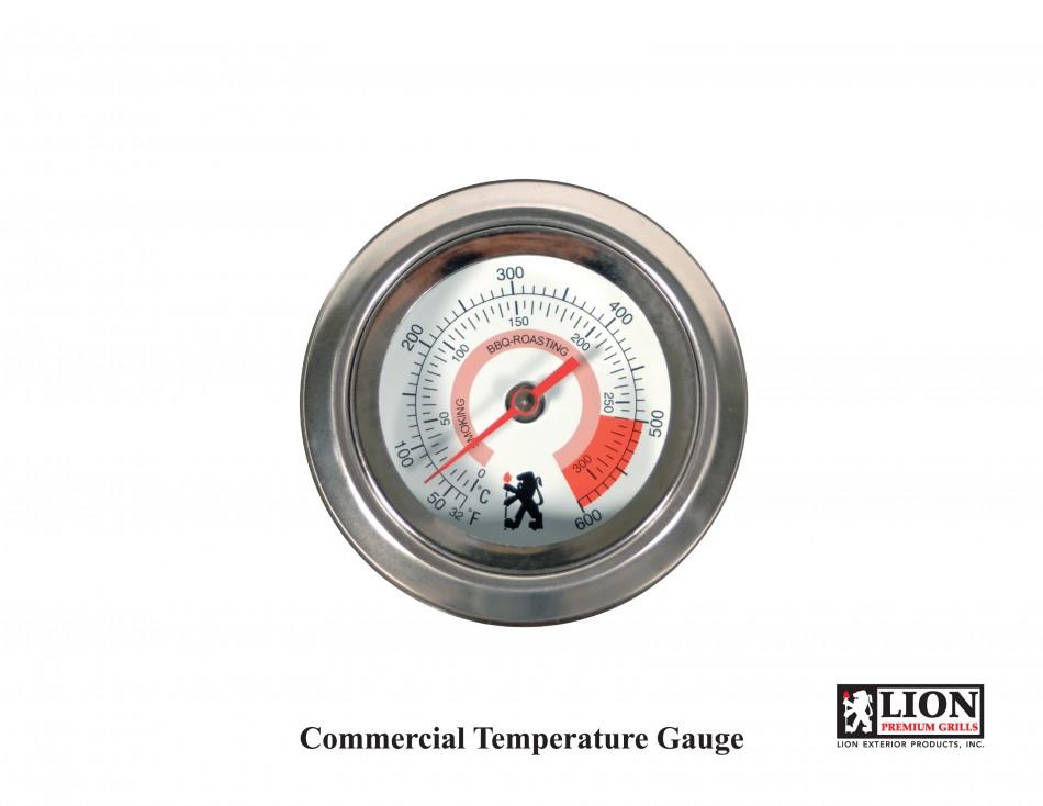 Extra-Large Temperature Gauge